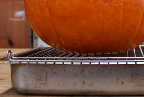 heart-pumpkin-dry