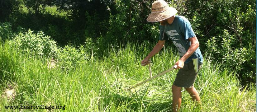 The Scythe: A Tool For Sustainable Farming