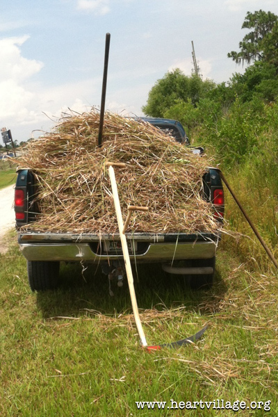 heart-truck-bed-with-scythed-grass