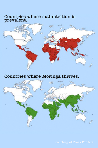 heart-moringa-map-graphic