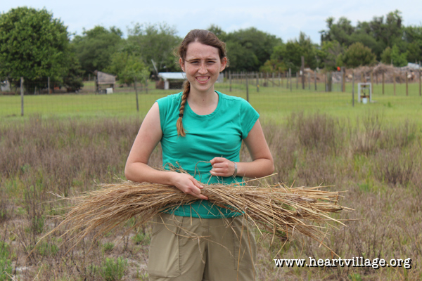 heart-survival-workshop-bryah-grasses
