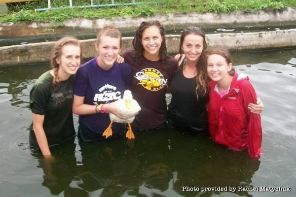heart-duck-pond-swim