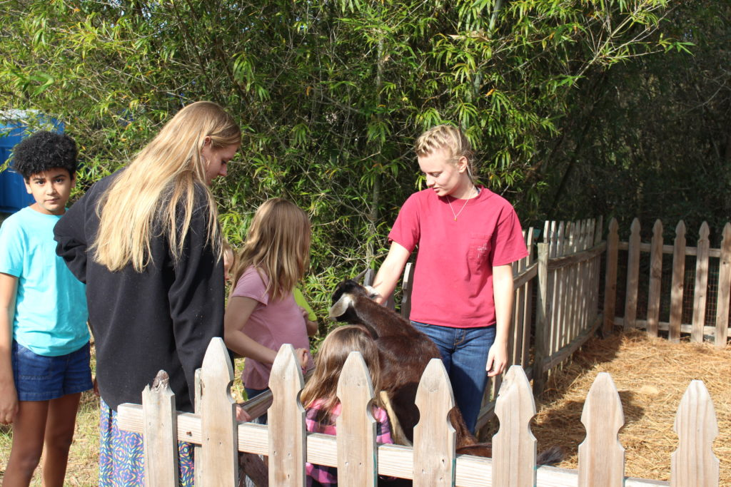 Children and adults pet a young goat at Garden Celebration